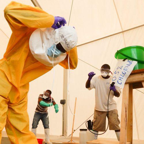 Ebola3-sq